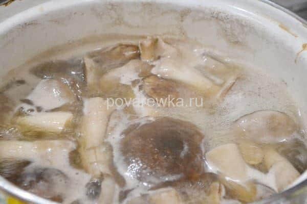 Маринованные белые грибы на зиму