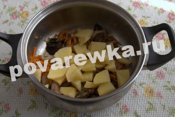 Грибной суп из шампиньонов: пошаговый рецепт с картофелем