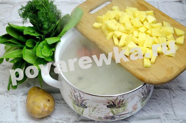 Зелёный борщ с щавелем и яйцом: рецепт с картофелем